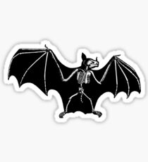 Bat Anatomy Sticker