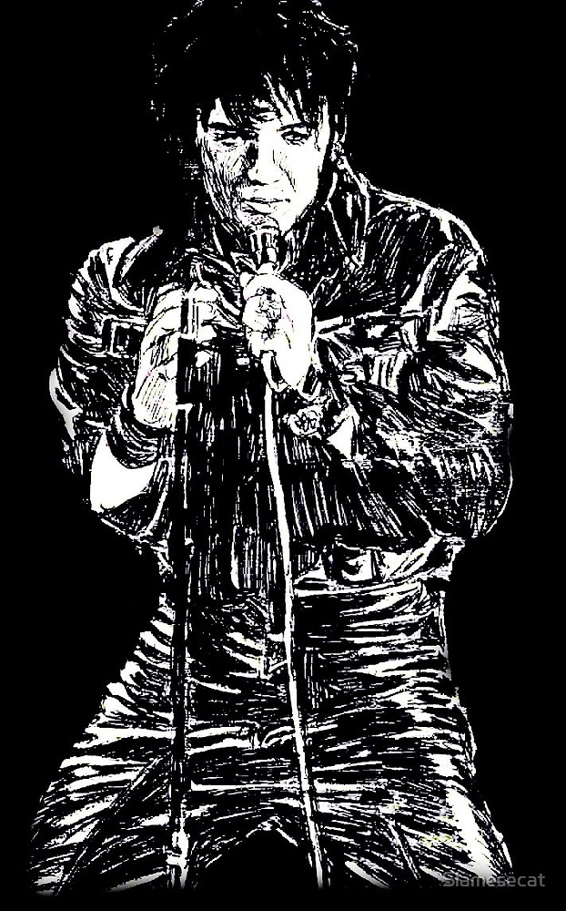 Elvis by Siamesecat