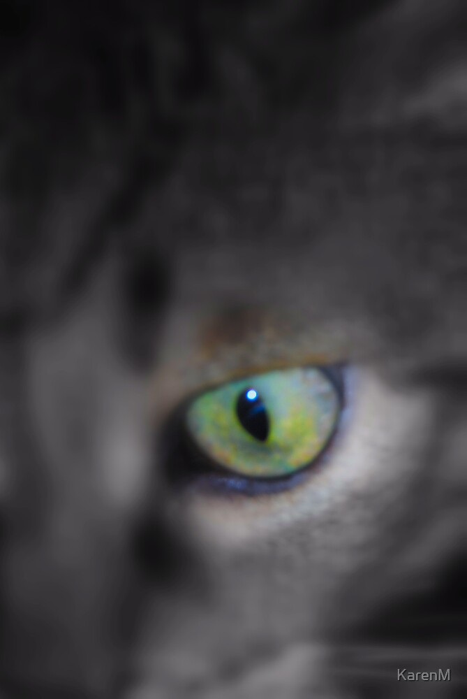 Cat's Eye by KarenM