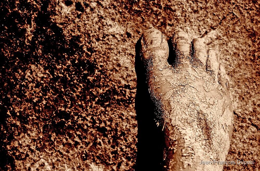 Mud foot by Jean-François Dupuis