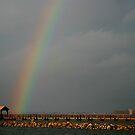 Rainbow's End by Jonicool
