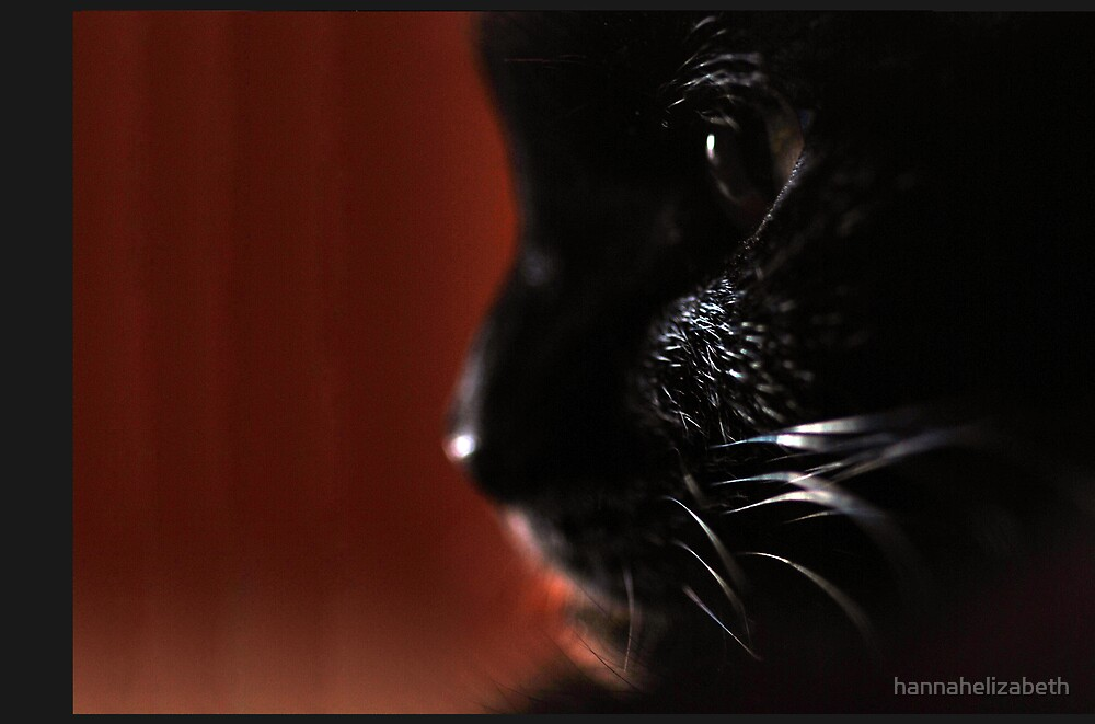 Superstition by hannahelizabeth