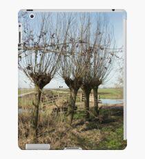 Springtime in the Netherlands iPad Case/Skin