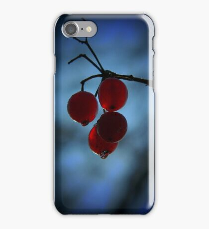 Cold winter nights, cold winter dreams iPhone Case/Skin