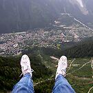 Taking the Leap by John Harrison