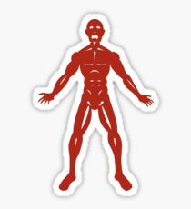 The Flayed Man Sticker