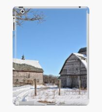 Late Winter Storm iPad Case/Skin