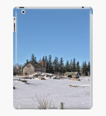 Late Winter Storm 2 iPad Case/Skin
