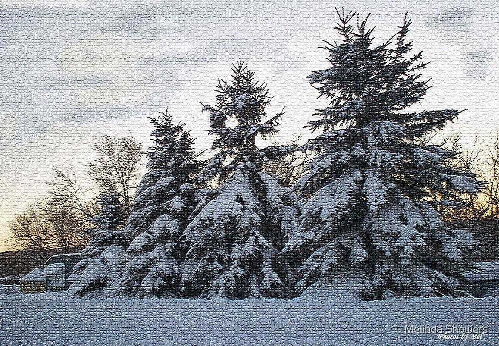 Winter Mosaic by Melinda Showers