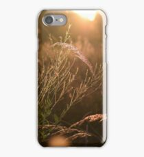 Tall Grass and Sunlight iPhone Case/Skin