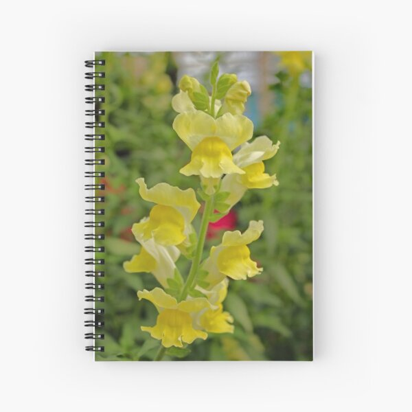 The Snapdragons Are Coming Into Bloom! Spiral Notebook