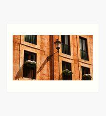 Roman facade Art Print