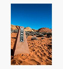 Valley of Fire 19 Photographic Print