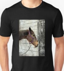 Even Horses Have Bad Hair Days Unisex T-Shirt