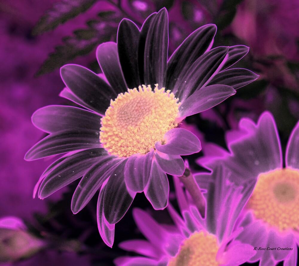 Purple glow by dewinged