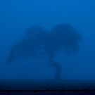 Silence in Blue by Leeo