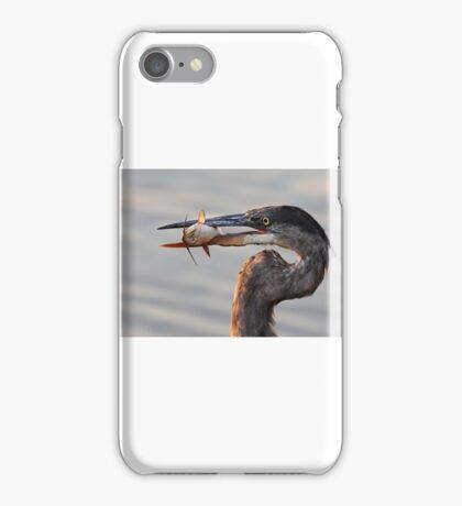 A fresh catch - Great Blue Heron iPhone Case/Skin