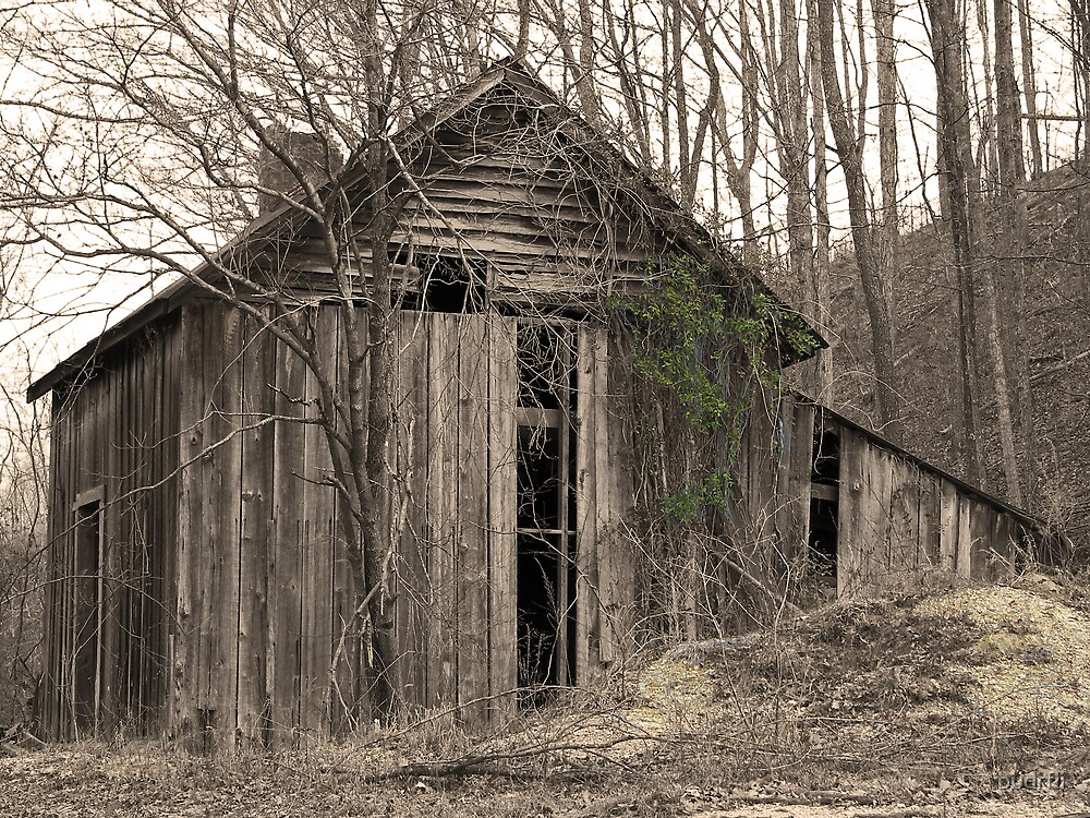 old homestead by budrfli