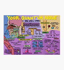 Your Quantum Nose: How Smell Works Photographic Print
