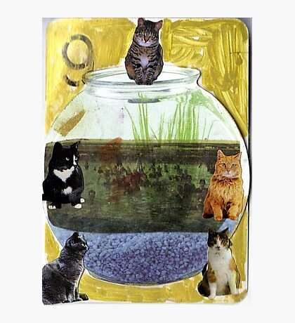Thank Gawd Cats Can't Swim Photographic Print