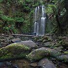 Beauchamp Falls  by Robert Armitage