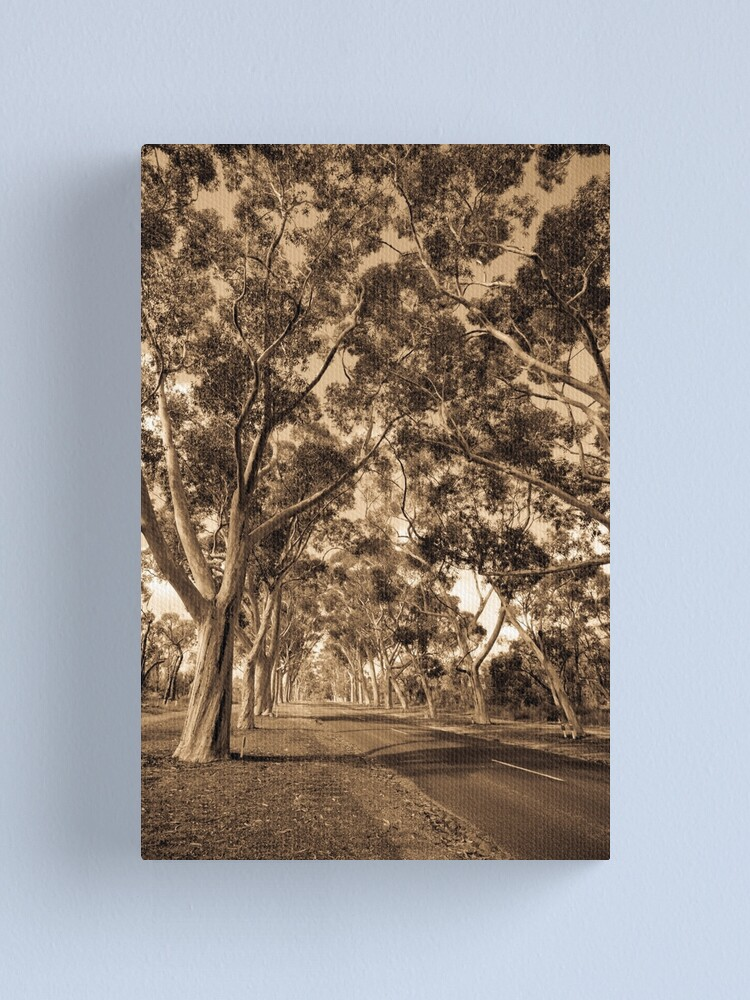 Alternate view of Lovekin Drive Canvas Print