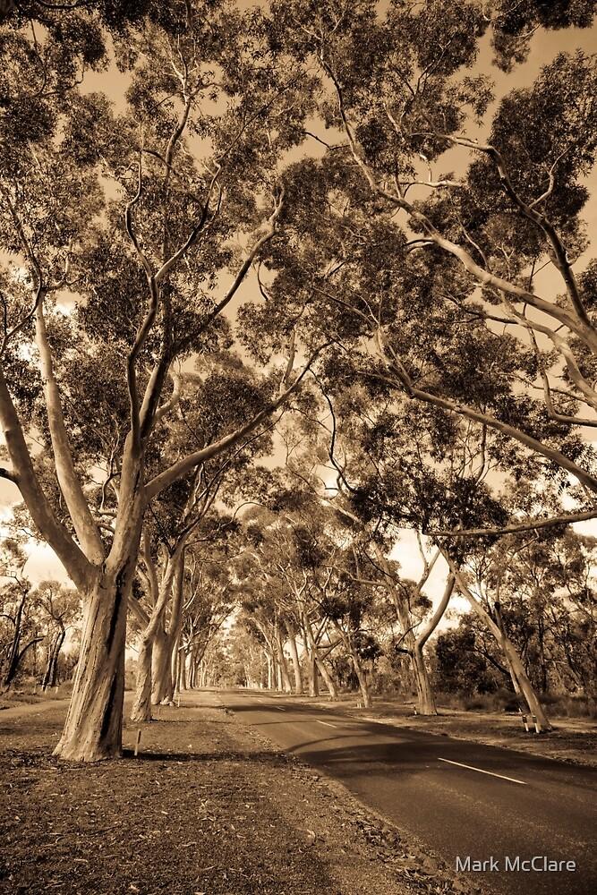 Lovekin Drive by Mark McClare