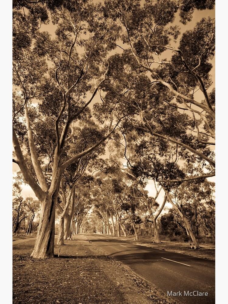 Lovekin Drive by mcclare
