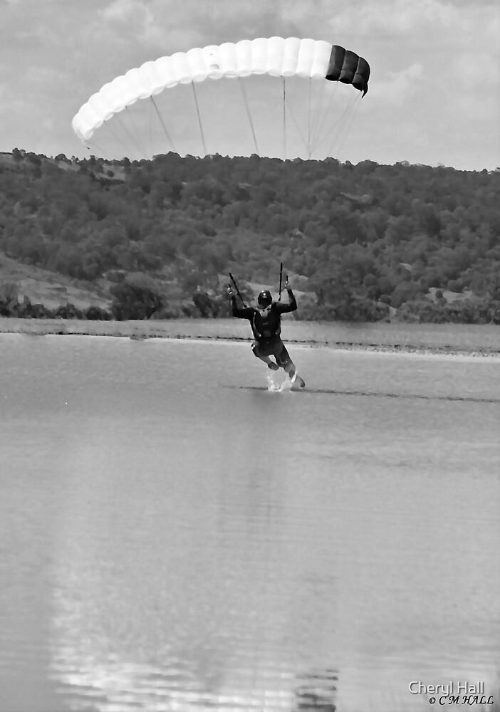 Black and white sky diver. by Cheryl Hall