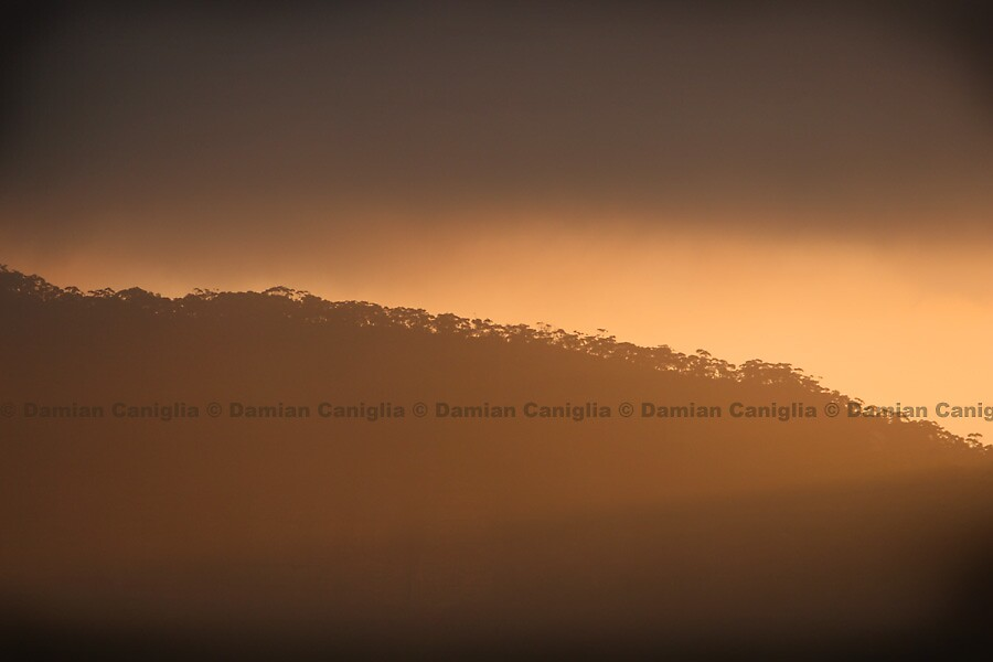 Sunset, Blue Mountains by damiancaniglia