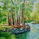 Darebin Creek in Flood by Dai Wynn