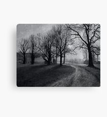 Road of Silence Canvas Print