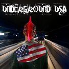Underground USA by allisonberryart