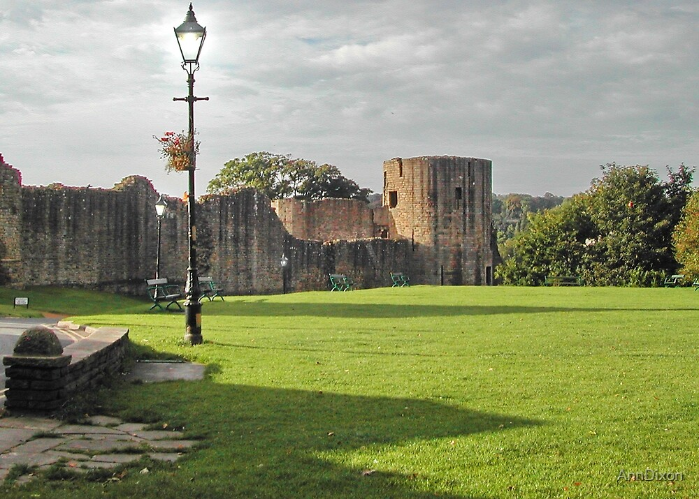 Barnard Castle, Durham, UK by AnnDixon