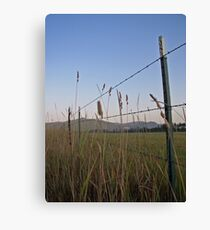 Fields of Grace Canvas Print