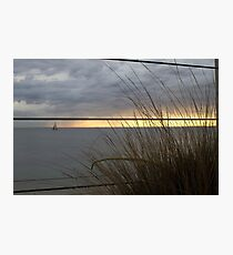 Golden Horizon Though the Grass Photographic Print