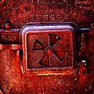 Fire by Michael J. Putman