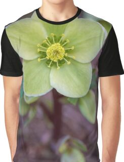 STanding tall Graphic T-Shirt