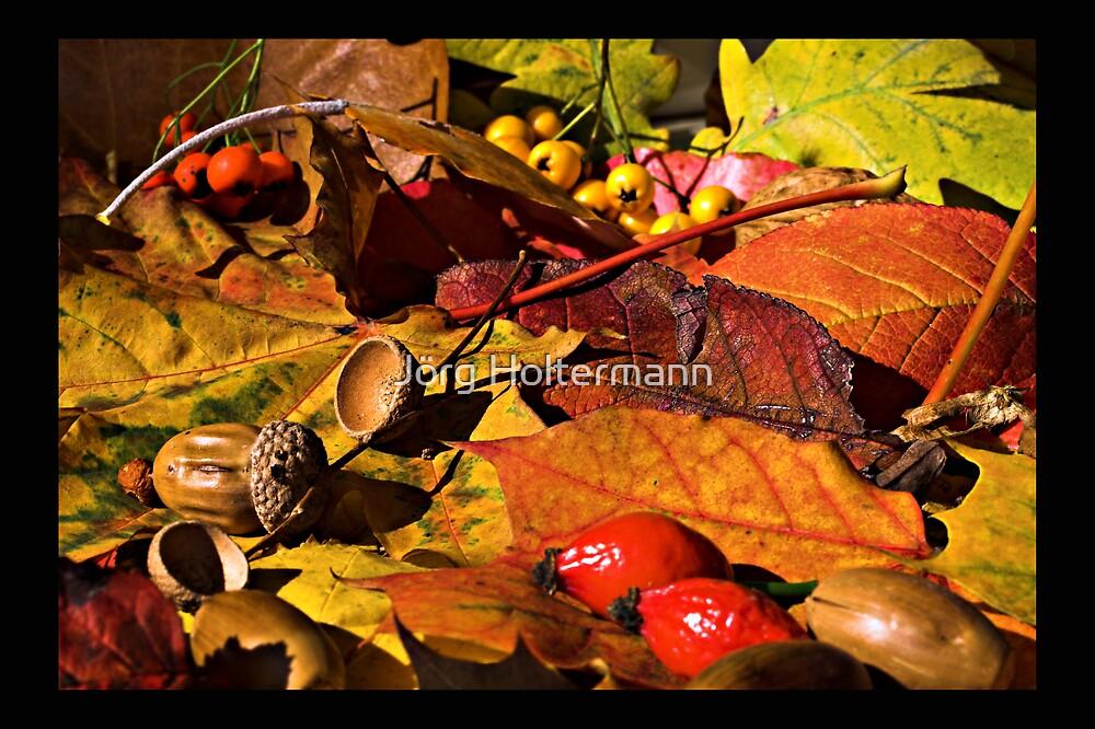 Autumn by Jörg Holtermann