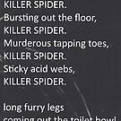 Room 13; Killer Spider Poem by SilverdaleAcad
