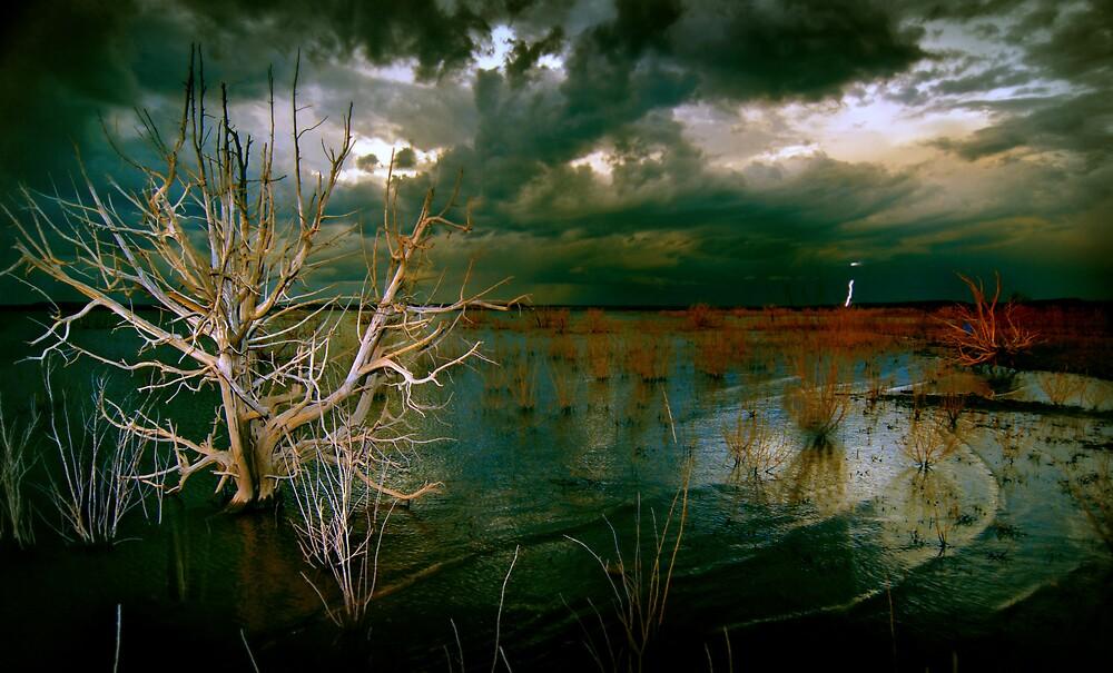 Santa Rosa Storm by Christian von Schleicher