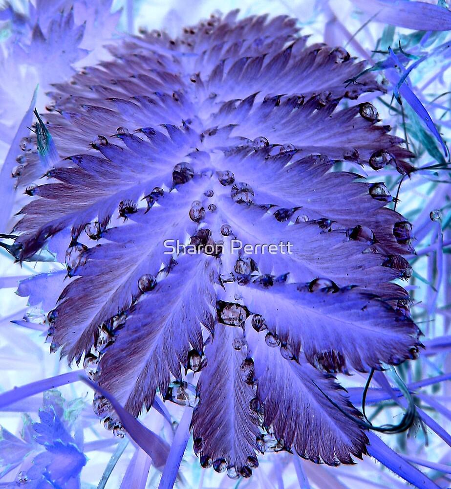Leaf Art by Sharon Perrett