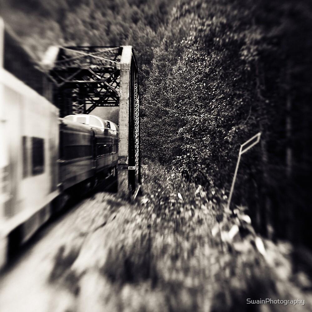 Alaska Railroad by SwainPhotography