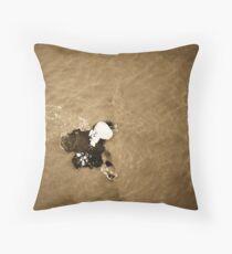 Ice Berg Throw Pillow