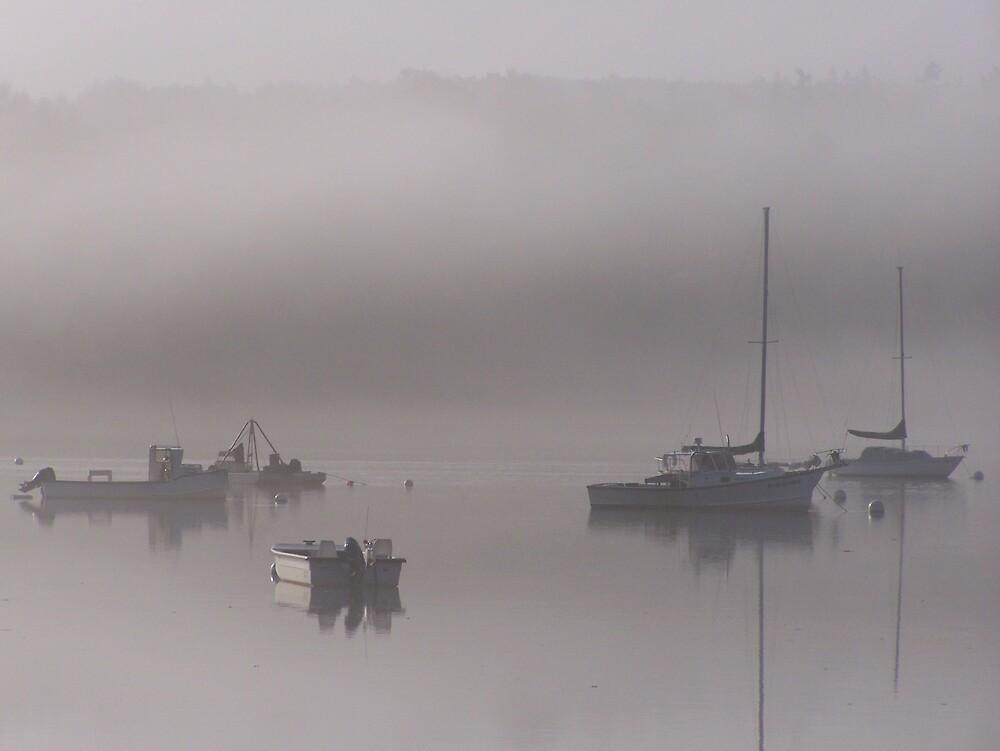 Fog by yukonjack