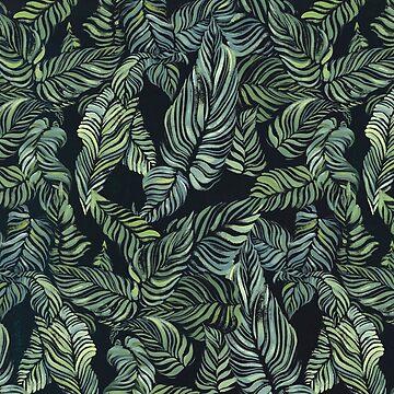 tropics by amyoharris