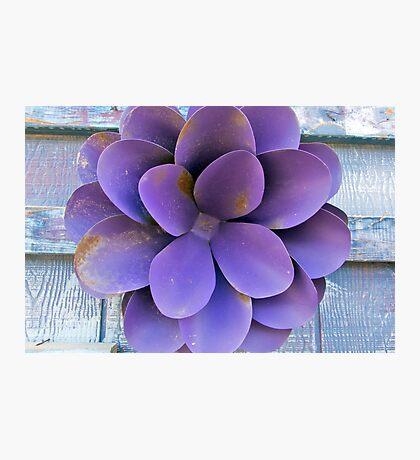 Metal Petals Photographic Print