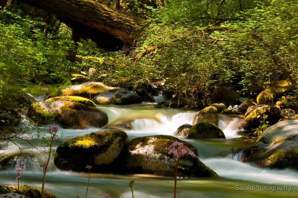 Boulder Creek 1 by SwainPhotography