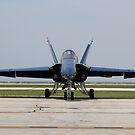 F18 Hornet by Karl R. Martin