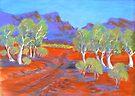 Kimberley Track #1 by Virginia McGowan